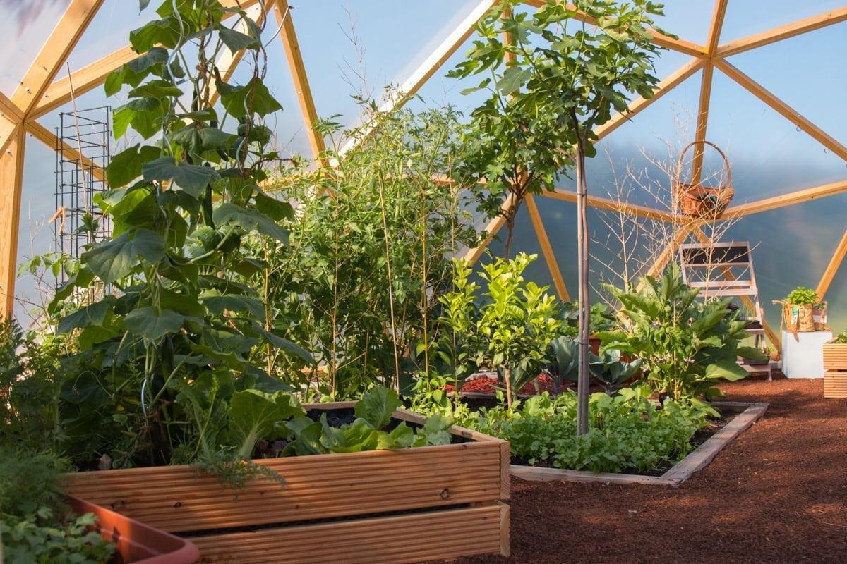 Garten-Dome-innen